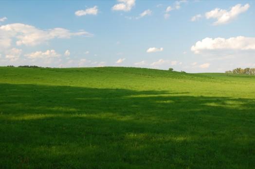 Jak robić zdjęcia z wakacji - zieleń