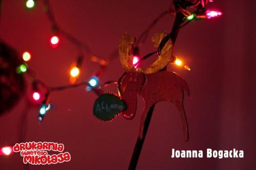 Joanna BogackaMiejsce 2 Christina Papaloannou - Konkurs Kolorowe Święta 2013 w Alboom.pl
