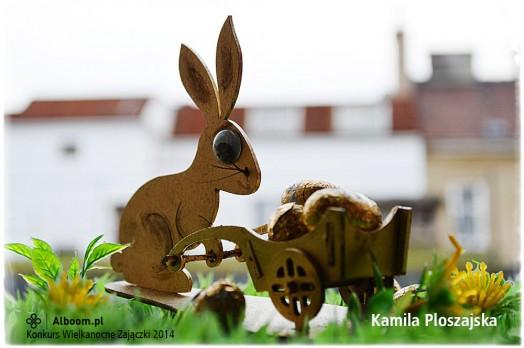 Konkurs Wielkanocne Zajączki 2014 - Kamila Ploszajska