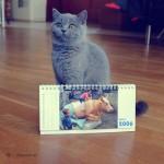 Fotokalendarze 10 lat temu