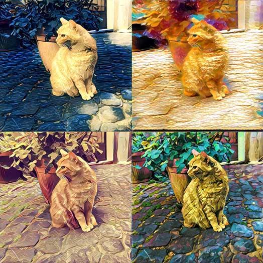 Inteligentne efekty z naszych zdjęć