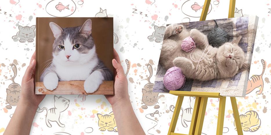 Fotokalendarze, terminarze, planery. Najlepsze prezenty dla leniwych kotów w Alboom.pl
